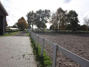 Großer Platz mit Blick zum Grasplatz und den Weiden