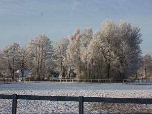 Panorama im Winter