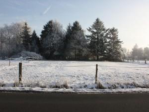 Und sogar im Winter einen Blick wert