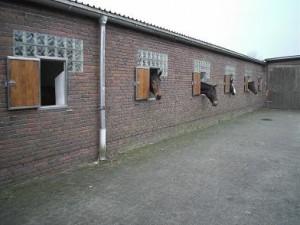 Unsere Boxen mit Fenster
